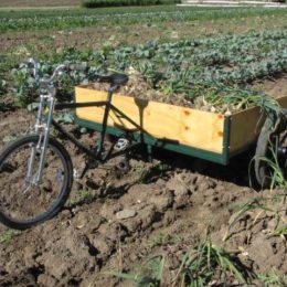 Farm Trike 3