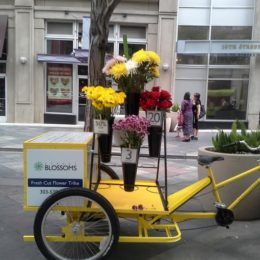 Sustainable flower deliveries and vending. Pedal power!